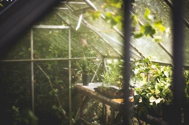 DIY IOT Garden greenhouse